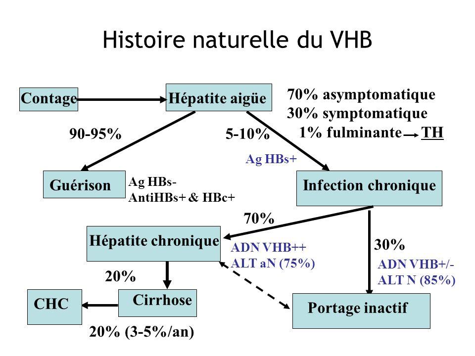 Contage 70% asymptomatique 30% symptomatique 1% fulminante TH Guérison 90-95% Infection chronique Portage inactif 30% 5-10% 70% Hépatite chronique Cir