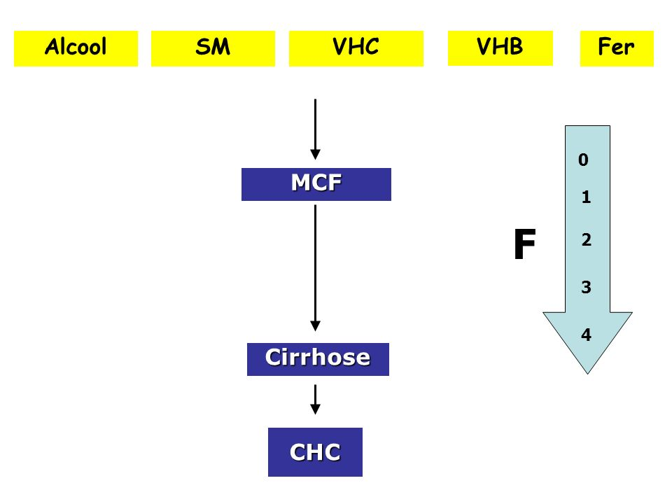 CHC Cirrhose AlcoolVHCVHB MCF SMFer 1 0 2 3 4 F