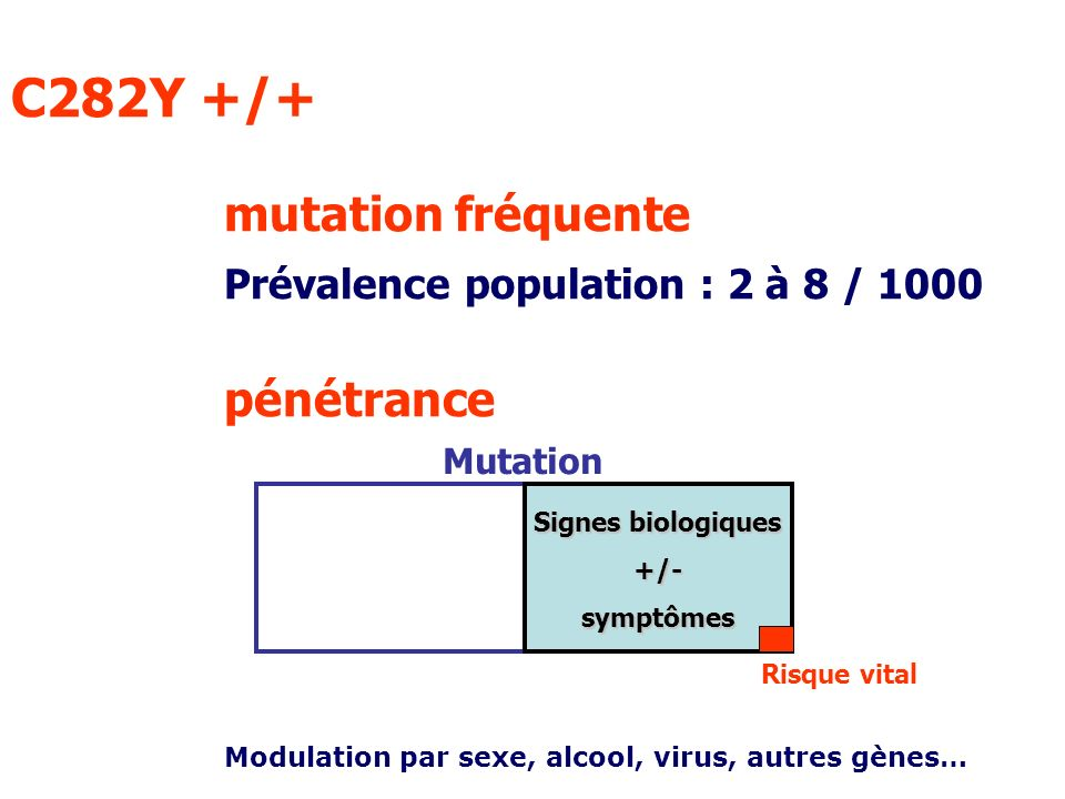 C282Y +/+ mutation fréquente Prévalence population : 2 à 8 / 1000 pénétrance Signes biologiques +/-symptômes Risque vital Modulation par sexe, alcool,