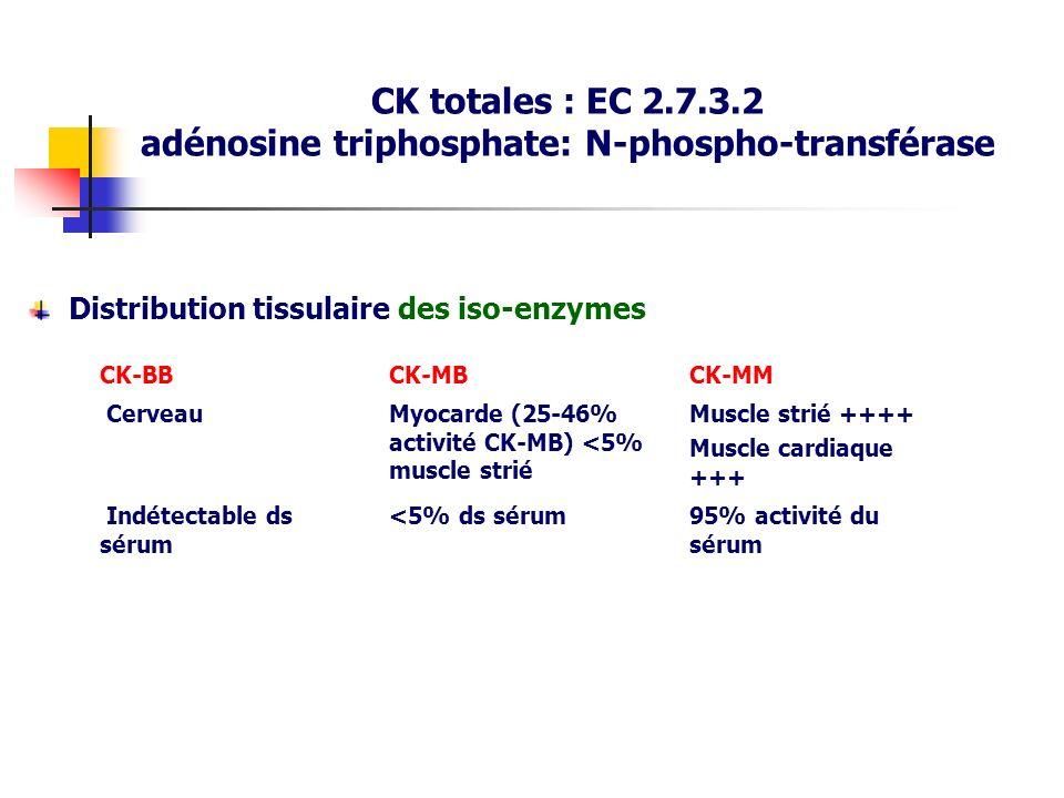 Distribution tissulaire des iso-enzymes CK-BBCK-MBCK-MM CerveauMyocarde (25-46% activité CK-MB) <5% muscle strié Muscle strié ++++ Muscle cardiaque ++