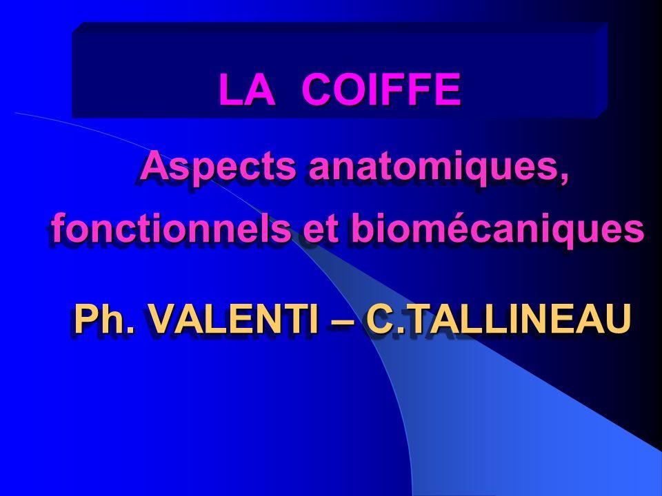 LA COIFFE LA COIFFE Aspects anatomiques, fonctionnels et biomécaniques Aspects anatomiques, fonctionnels et biomécaniques Ph. VALENTI – C.TALLINEAU As