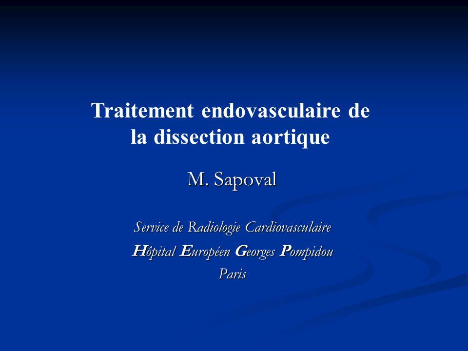 M. Sapoval Service de Radiologie Cardiovasculaire H ôpital E uropéen G eorges P ompidou Paris Traitement endovasculaire de la dissection aortique