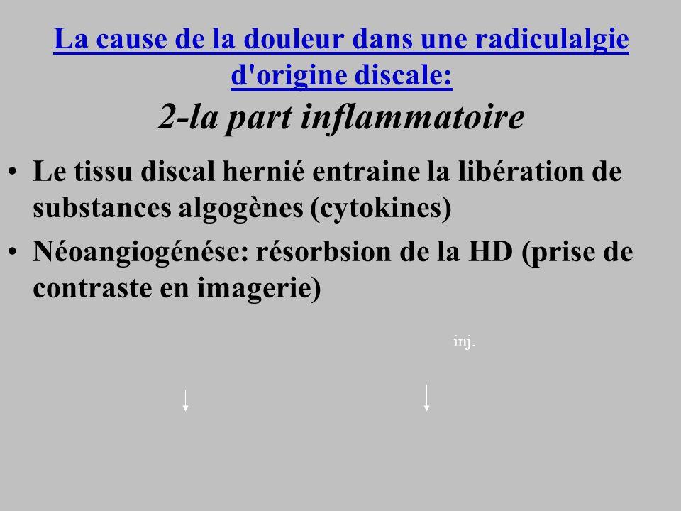 La cause de la douleur dans une radiculalgie d'origine discale: 2-la part inflammatoire Le tissu discal hernié entraine la libération de substances al