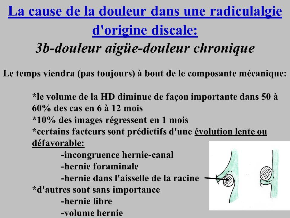 La cause de la douleur dans une radiculalgie d'origine discale: 3b-douleur aigüe-douleur chronique Le temps viendra (pas toujours) à bout de le compos