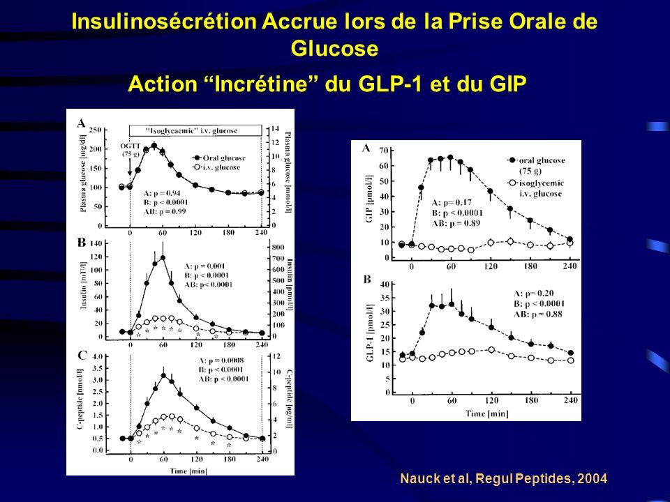 Insulinosécrétion Accrue lors de la Prise Orale de Glucose Nauck et al, Regul Peptides, 2004 Action Incrétine du GLP-1 et du GIP