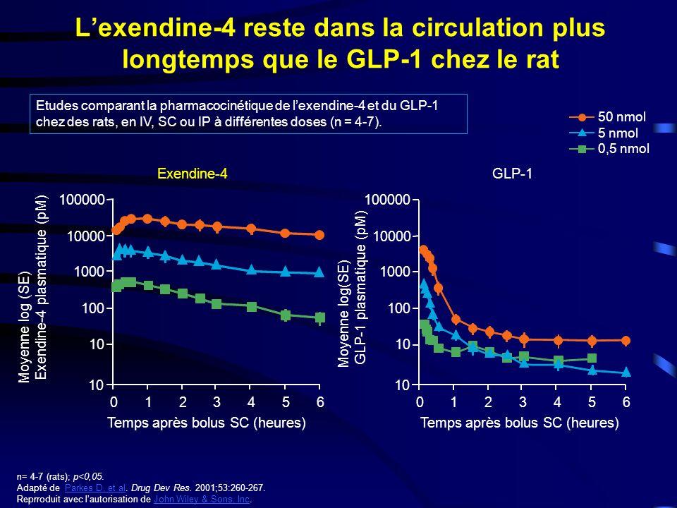Lexendine-4 reste dans la circulation plus longtemps que le GLP-1 chez le rat Temps après bolus SC (heures) Moyenne log(SE) GLP-1 plasmatique (pM) 50 nmol 5 nmol 0,5 nmol Temps après bolus SC (heures) Moyenne log (SE) Exendine-4 plasmatique (pM) Exendine-4 GLP-1 0123456 10 100 1000 10000 100000 0123456 10 100 1000 10000 100000 n= 4-7 (rats); p<0,05.