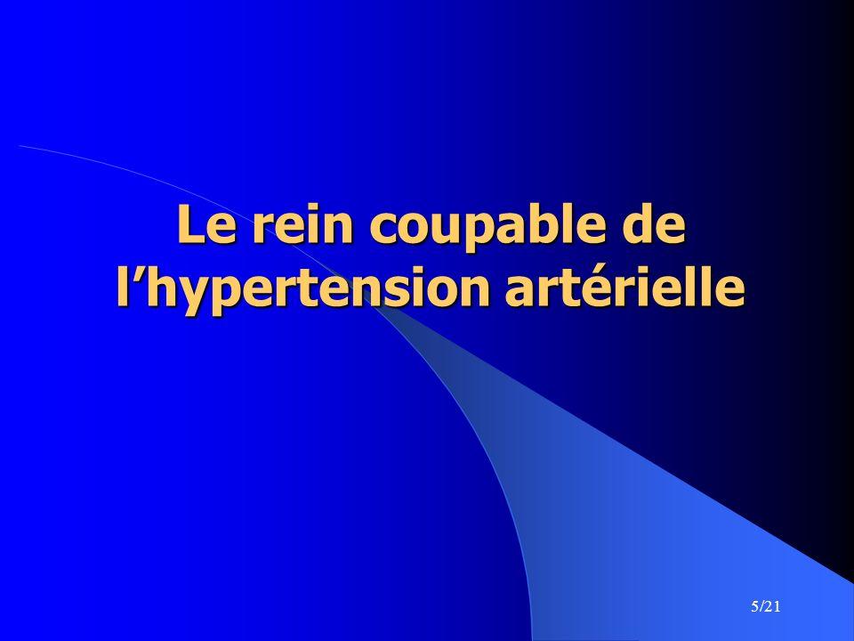 5/21 Le rein coupable de lhypertension artérielle