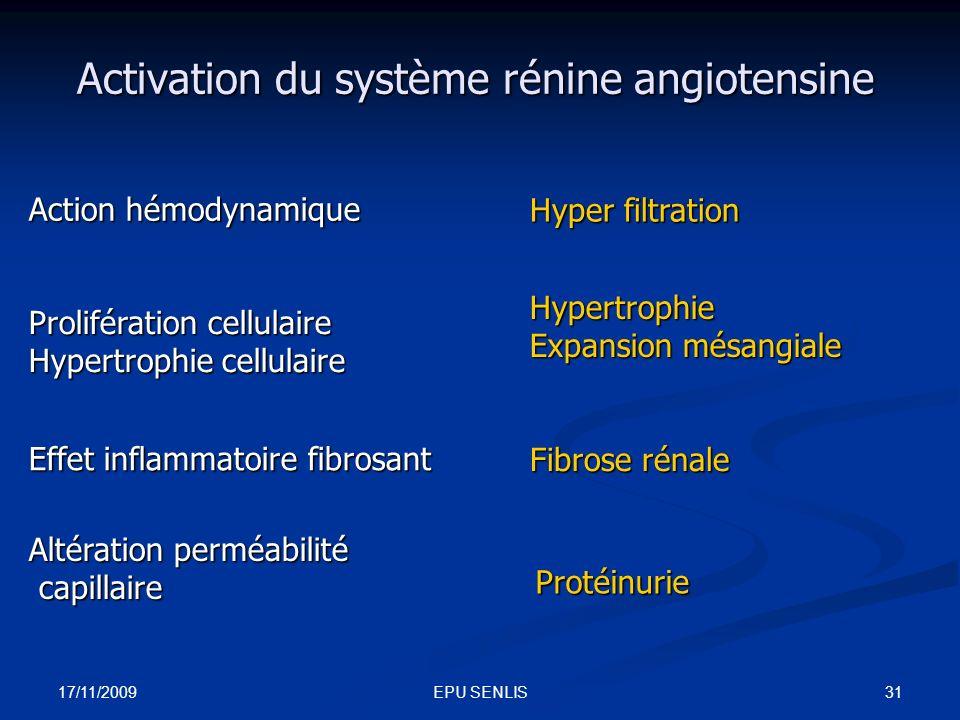 17/11/2009 31EPU SENLIS Activation du système rénine angiotensine Action hémodynamique Prolifération cellulaire Hypertrophie cellulaire Altération per