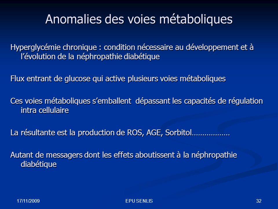 17/11/2009 32EPU SENLIS Anomalies des voies métaboliques Hyperglycémie chronique : condition nécessaire au développement et à lévolution de la néphrop