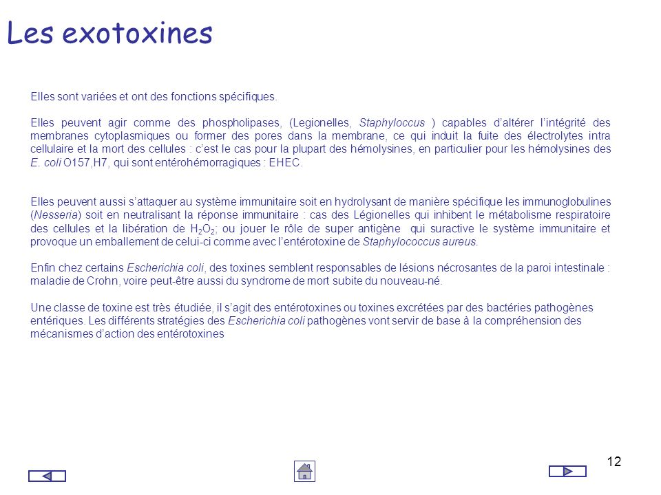 12 Les exotoxines Elles sont variées et ont des fonctions spécifiques. Elles peuvent agir comme des phospholipases, (Legionelles, Staphyloccus ) capab