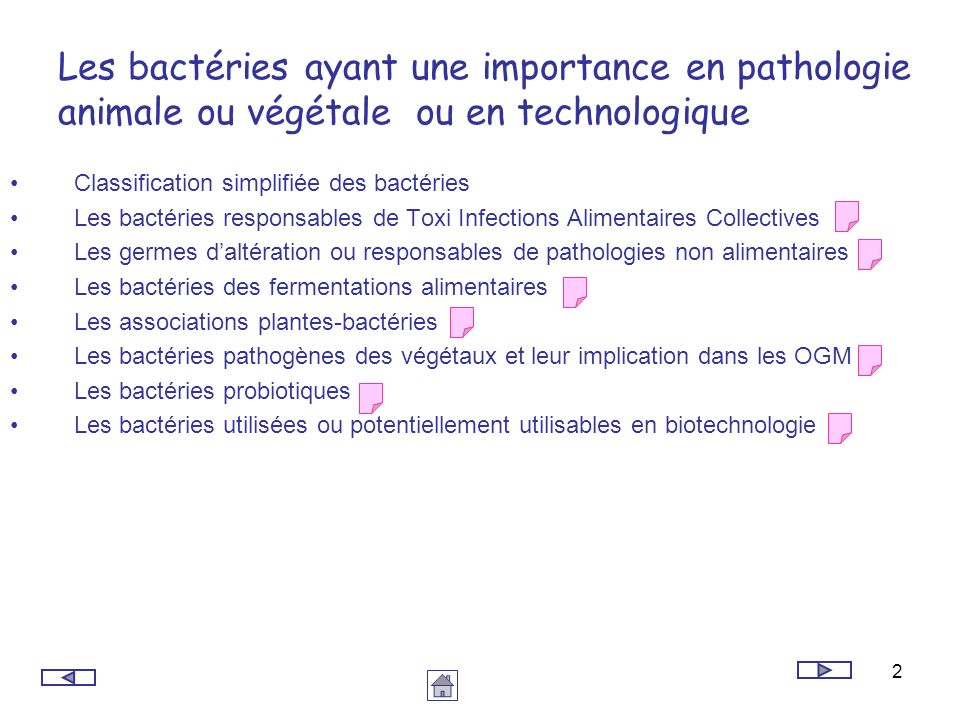 2 Les bactéries ayant une importance en pathologie animale ou végétale ou en technologique Classification simplifiée des bactéries Les bactéries respo