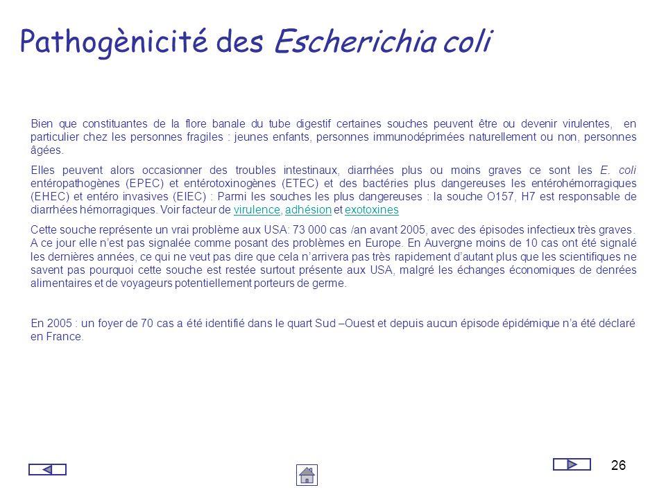 26 Pathogènicité des Escherichia coli Bien que constituantes de la flore banale du tube digestif certaines souches peuvent être ou devenir virulentes,