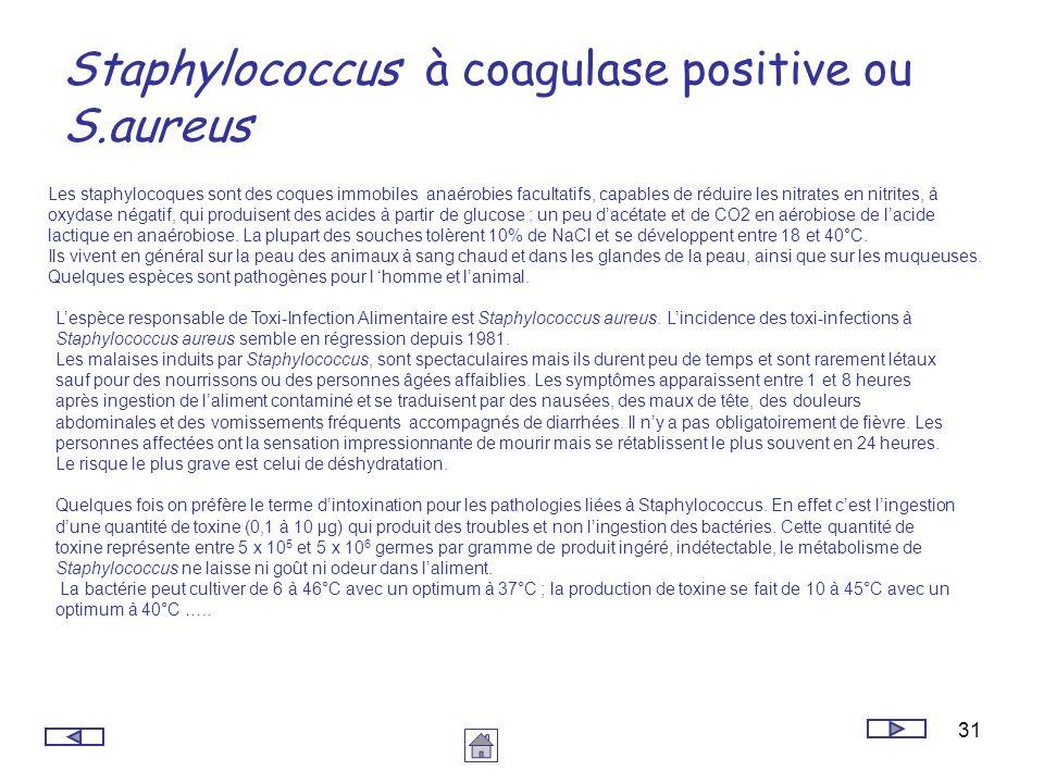 31 Staphylococcus à coagulase positive ou S.aureus Les staphylocoques sont des coques immobiles anaérobies facultatifs, capables de réduire les nitrat