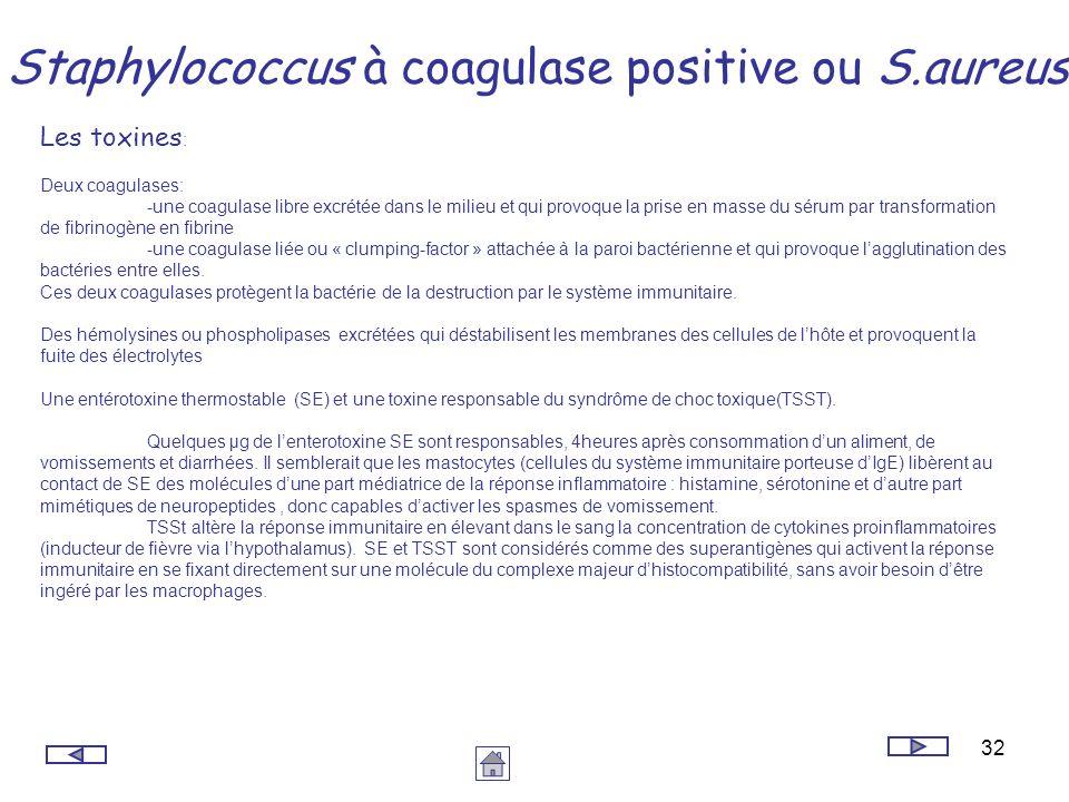 32 Staphylococcus à coagulase positive ou S.aureus Les toxines : Deux coagulases: -une coagulase libre excrétée dans le milieu et qui provoque la pris