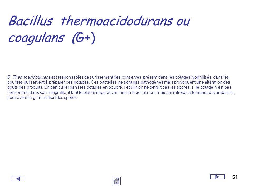 51 Bacillus thermoacidodurans ou coagulans (G+) B. Thermoacidodurans est responsables de surissement des conserves, présent dans les potages lyophilis