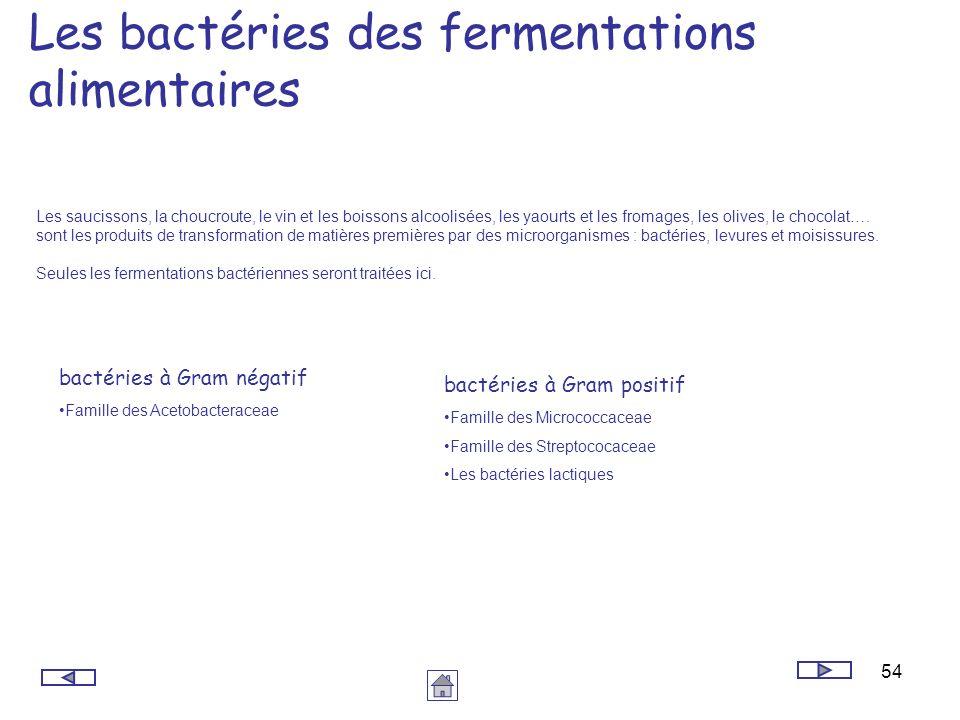 54 Les bactéries des fermentations alimentaires Les saucissons, la choucroute, le vin et les boissons alcoolisées, les yaourts et les fromages, les ol