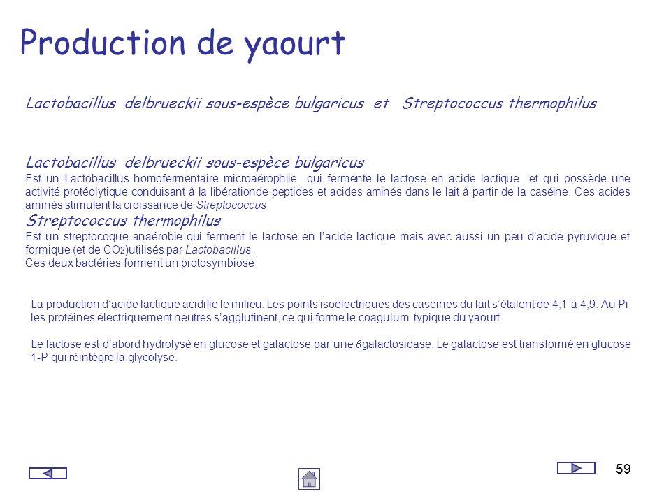 59 Production de yaourt Lactobacillus delbrueckii sous-espèce bulgaricus et Streptococcus thermophilus La production dacide lactique acidifie le milie