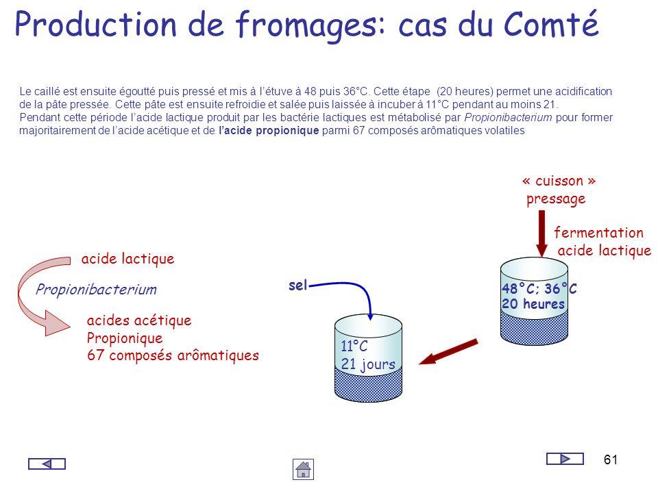 61 Production de fromages: cas du Comté 48°C; 36°C 20 heures fermentation acide lactique 11°C 21 jours sel « cuisson » pressage acide lactique acides
