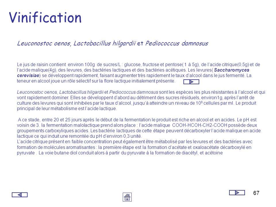 67 Vinification Le jus de raisin contient environ 100g de sucres/L : glucose, fructose et pentose( 1 à 5g), de lacide citrique(0,5g) et de lacide mali