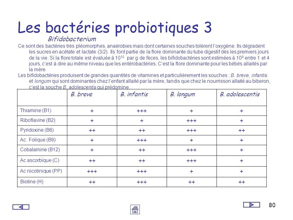 80 Les bactéries probiotiques 3 Bifidobacterium Ce sont des bactéries très pléomorphes, anaérobies mais dont certaines souches tolèrent loxygène. Ils