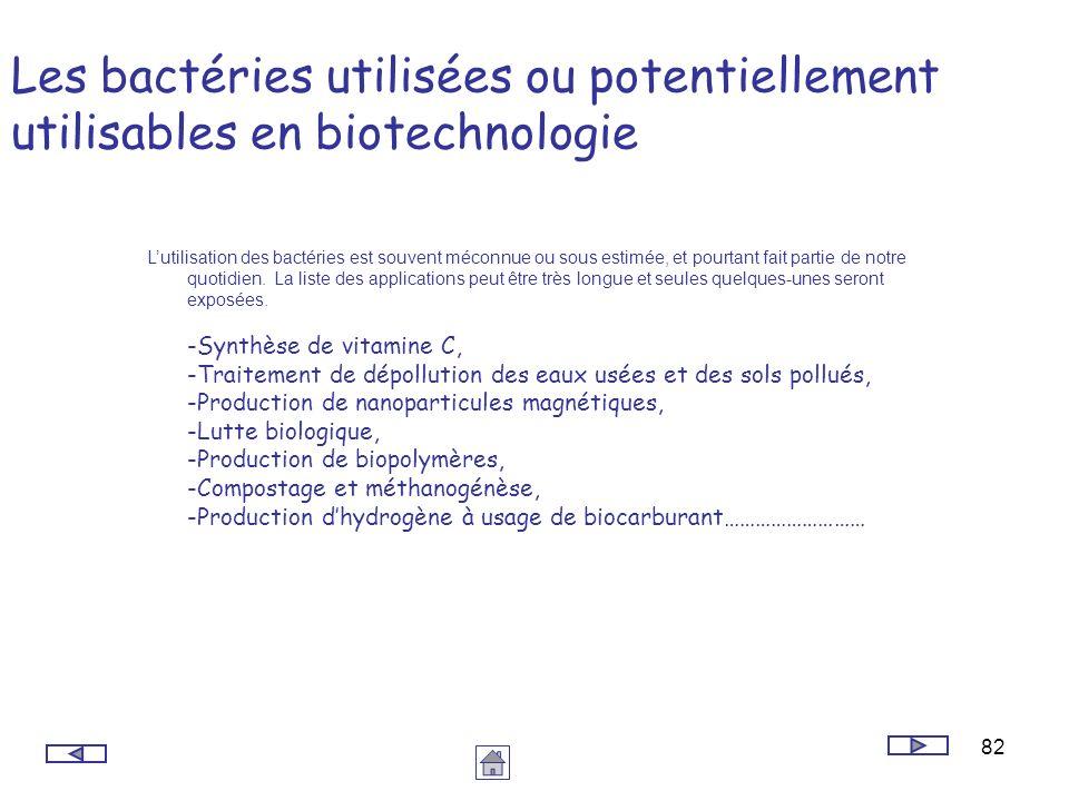 82 Les bactéries utilisées ou potentiellement utilisables en biotechnologie Lutilisation des bactéries est souvent méconnue ou sous estimée, et pourta