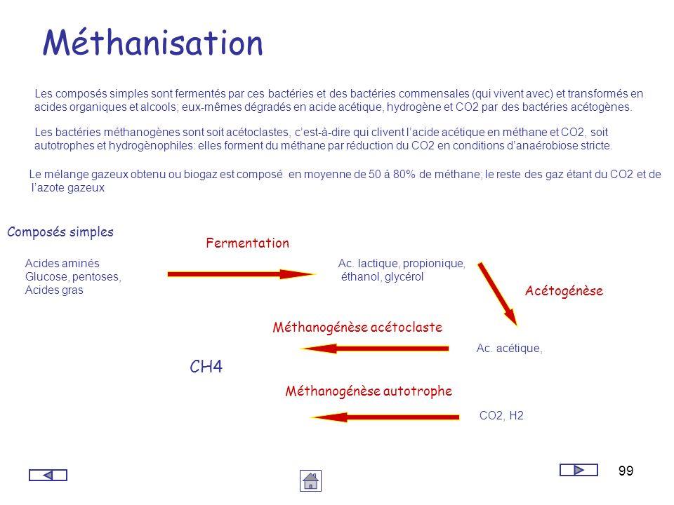 99 Méthanisation Les composés simples sont fermentés par ces bactéries et des bactéries commensales (qui vivent avec) et transformés en acides organiq