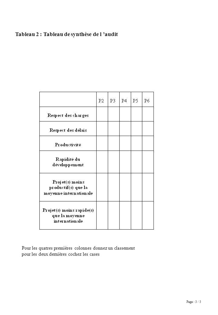 Page : 3 / 3 Tableau 2 : Tableau de synthèse de l audit Pour les quatres premières colonnes donnez un classement pour les deux dernières cochez les cases