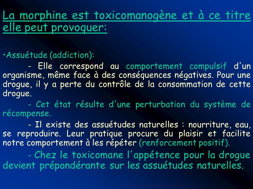 La morphine est toxicomanogène et à ce titre elle peut provoquer: Assuétude (addiction): - Elle correspond au comportement compulsif d'un organisme, m