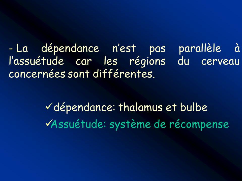 - La dépendance nest pas parallèle à lassuétude car les régions du cerveau concernées sont différentes. dépendance: thalamus et bulbe Assuétude: systè
