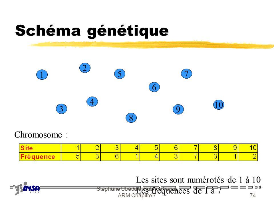 Stéphane Ubéda et Fabrice Valois ARM Chapitre 773 Algorithmes génétiques zDe loin le plus courant chez les opérateurs Populations : P Individus : P 1,