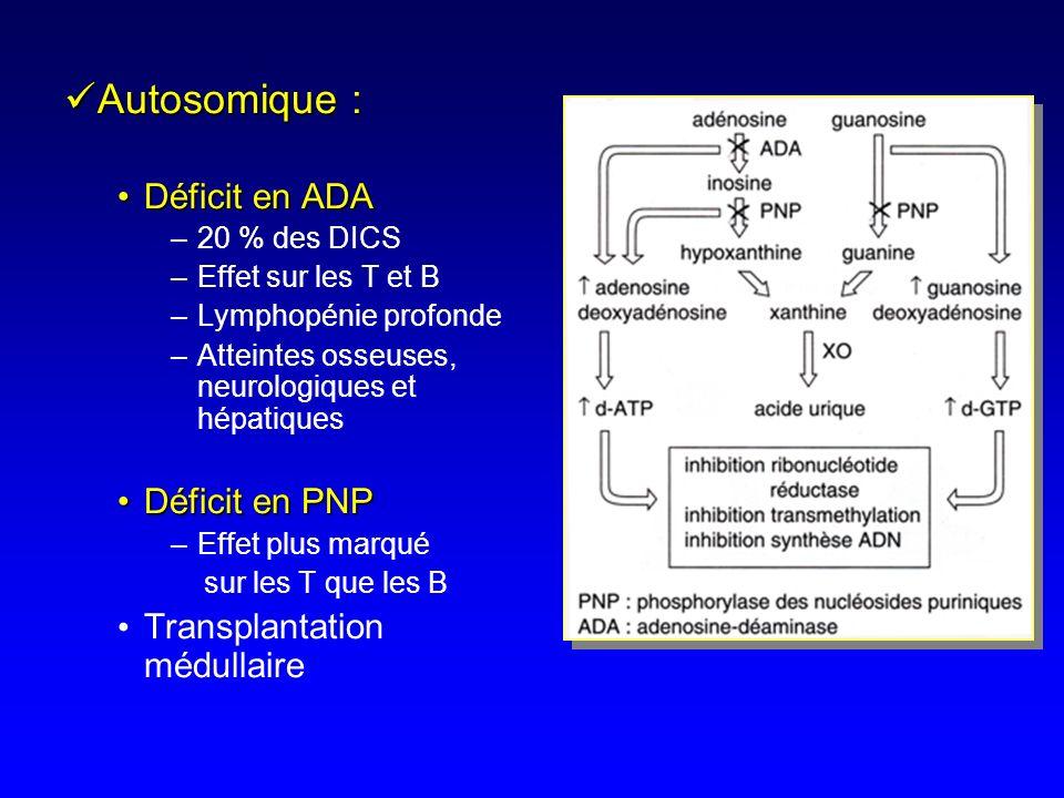 DICSDICS Groupe hétérogène Groupe hétérogène 9 anomalies moléculaires connues = 90% des cas 9 anomalies moléculaires connues = 90% des cas Profonde ly