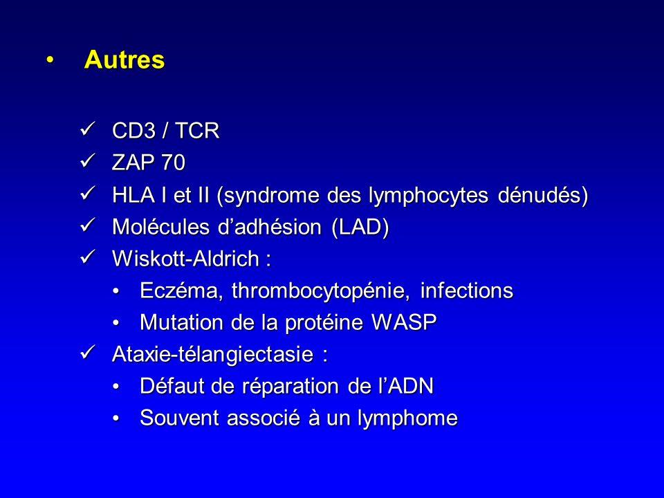 Mutations de RAG1et RAG2Mutations de RAG1et RAG2 –Anomalies de la recombinaison V(D)J: Assemblage des gènes codant pour les chaînes des Ig et du TCRAs