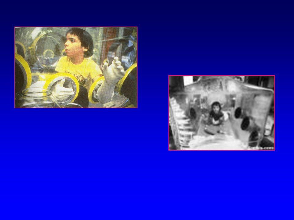 GREFFES DE MOELLE OSSEUSE Dans quelles situations ?Dans quelles situations ? –DICS Bébés bulleBébés bulle –Di George ( + implantation de thymus allogé