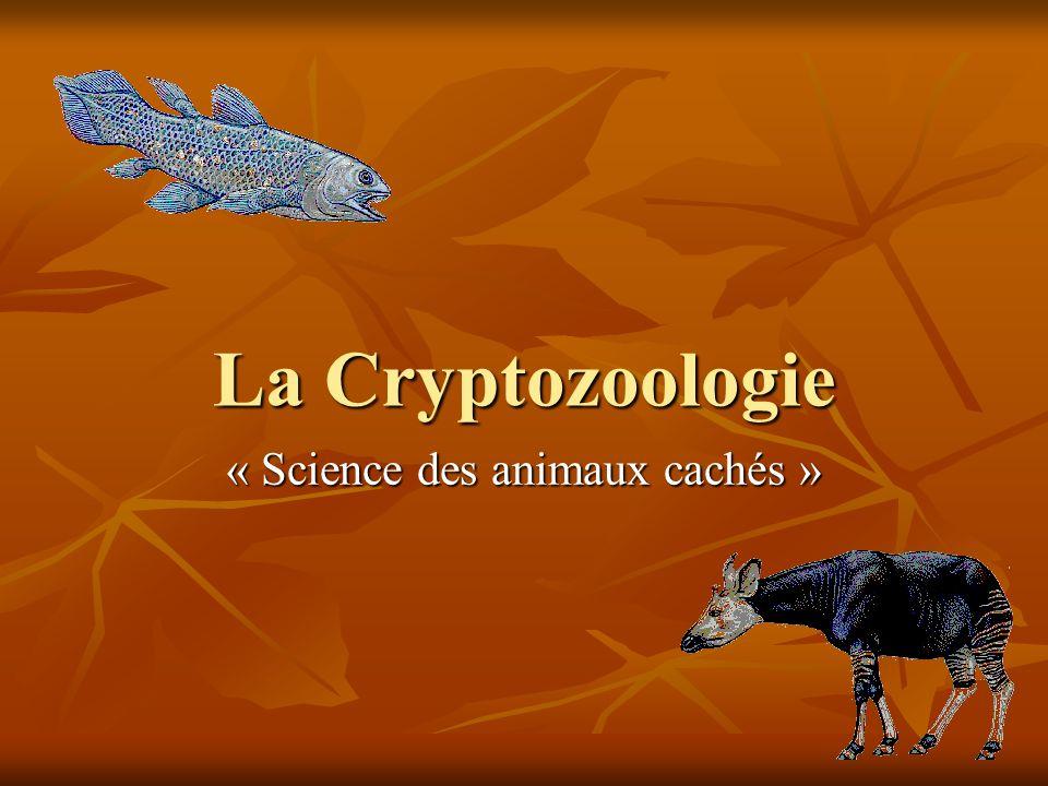 La Cryptozoologie « Science des animaux cachés »