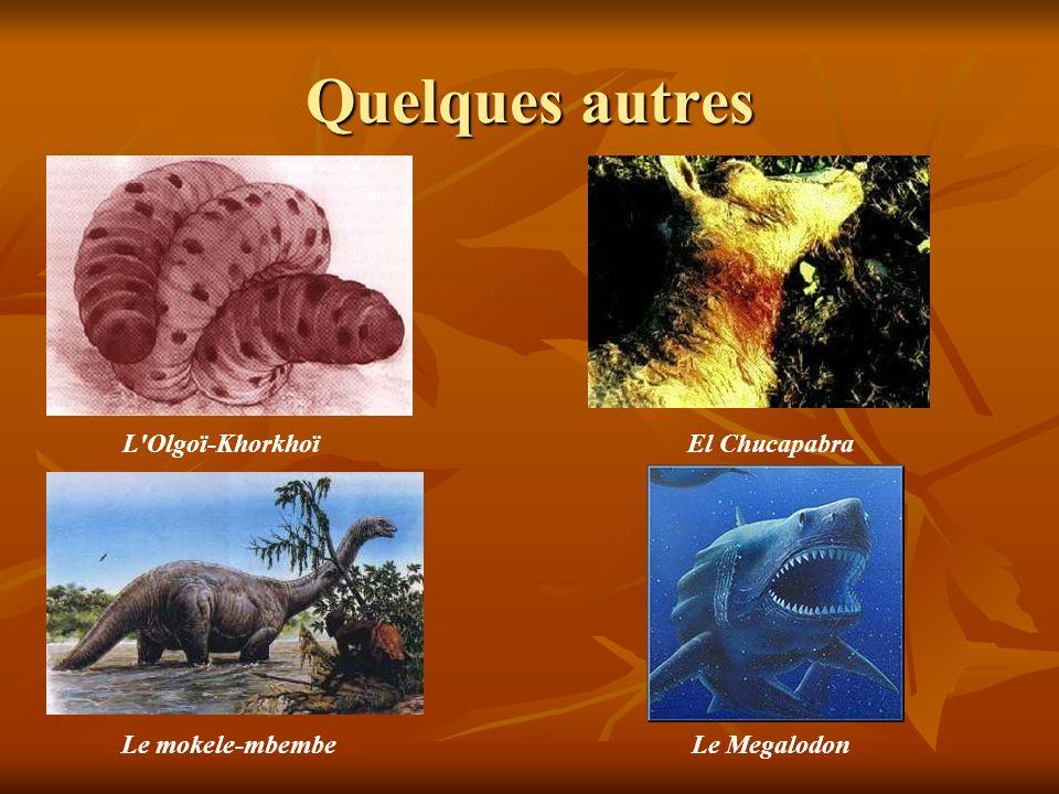 Quelques autres L'Olgoï-KhorkhoïEl Chucapabra Le mokele-mbembeLe Megalodon
