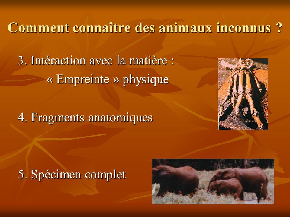 Comment connaître des animaux inconnus ? 3. Intéraction avec la matière : « Empreinte » physique 4. Fragments anatomiques 5. Spécimen complet
