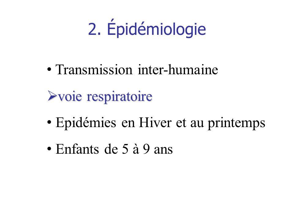 2. Épidémiologie Transmission inter-humaine voie respiratoire voie respiratoire Epidémies en Hiver et au printemps Enfants de 5 à 9 ans