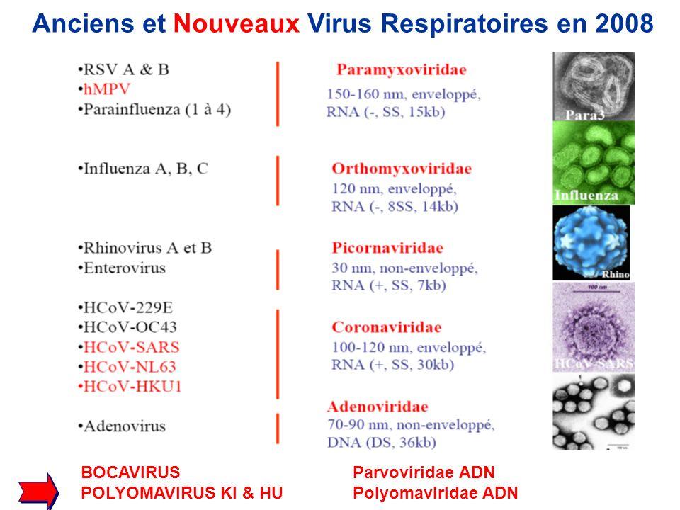 BOCAVIRUSParvoviridae ADN POLYOMAVIRUS KI & HU Polyomaviridae ADN Anciens et Nouveaux Virus Respiratoires en 2008