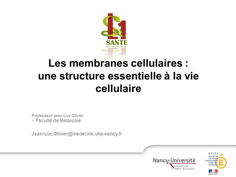 Professeur Jean-Luc Olivier > Faculté de Médecine Jean-Luc.Olivier@medecine.uhp-nancy.fr Les membranes cellulaires : une structure essentielle à la vie cellulaire
