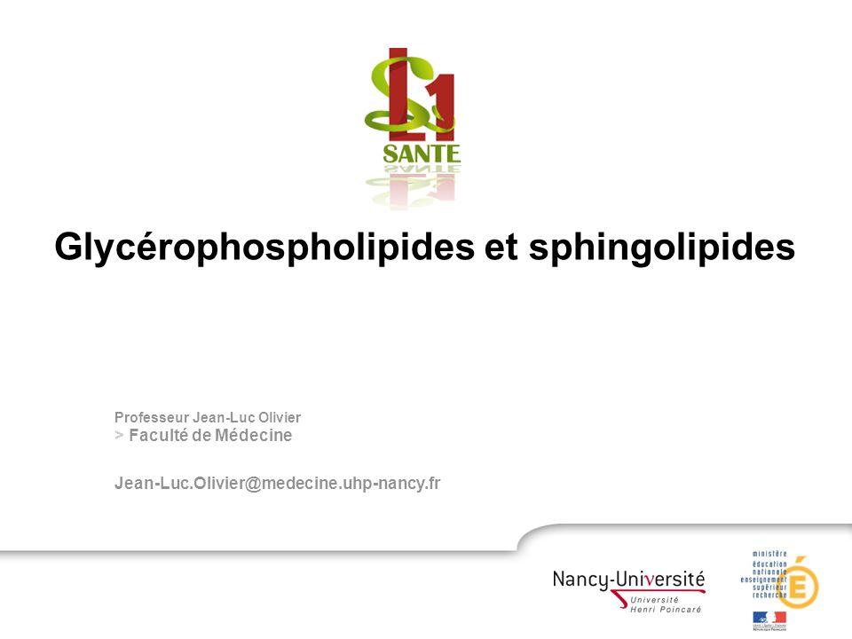 Professeur Jean-Luc Olivier > Faculté de Médecine Jean-Luc.Olivier@medecine.uhp-nancy.fr Glycérophospholipides et sphingolipides