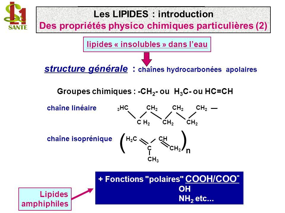 lipides « insolubles » dans leau structure générale : chaînes hydrocarbonées apolaires Groupes chimiques : -CH 2 - ou H 3 C- ou HC=CH 3 HC CH 2 CH 2 C