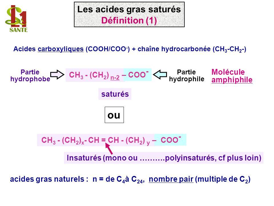 Acides carboxyliques (COOH/COO - ) + chaîne hydrocarbonée (CH 3 -CH 2 -) CH 3 - (CH 2 ) n-2 – COO - Partie hydrophile Partie hydrophobe Molécule amphi