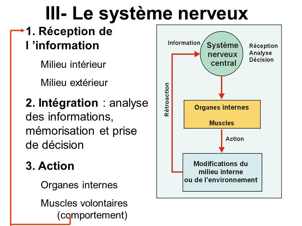 1.Réception de l information Milieu intérieur Milieu extérieur 2.