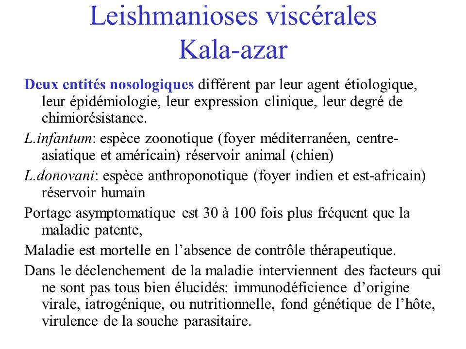 Leishmanioses viscérales Kala-azar Deux entités nosologiques différent par leur agent étiologique, leur épidémiologie, leur expression clinique, leur degré de chimiorésistance.