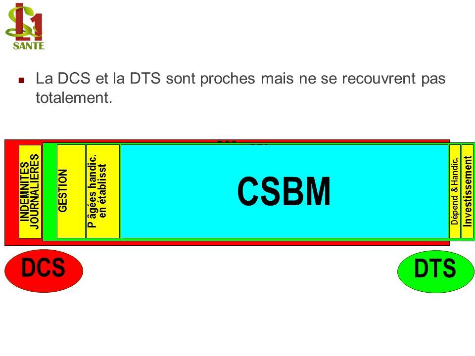 La DCS et la DTS sont proches mais ne se recouvrent pas totalement. DCS DTS CSBM Dépend & Handic. InvestissementGESTIONP âgées handic. en établisst IN