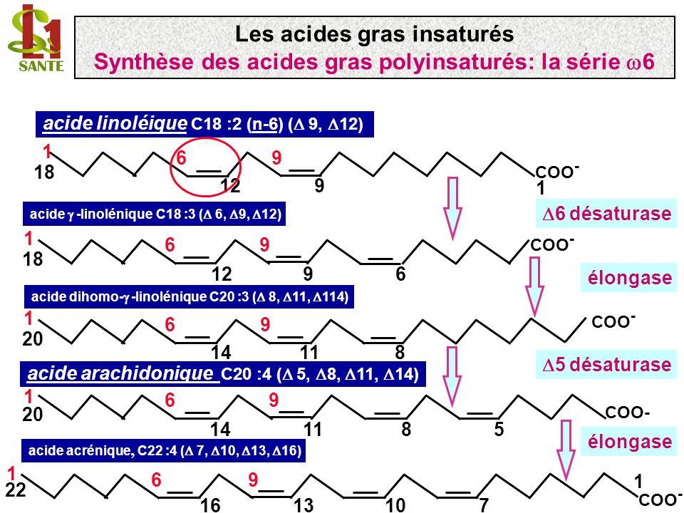 acide linoléique C18 :2 (n-6) ( 9, 12) acide -linolénique C18 :3 ( 6, 9, 12) 6 désaturase 1 9 COO - 18 1 96 12 COO - 18 1 96 9126 acide dihomo- -linol