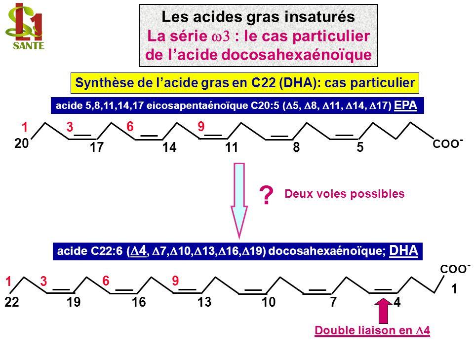 Synthèse de lacide gras en C22 (DHA): cas particulier acide 5,8,11,14,17 eicosapentaénoïque C20:5 ( 5, 8, 11, 14, 17) EPA 11148 96 5 13 20 17 COO - ac