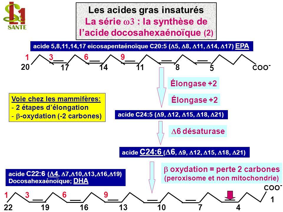 Voie chez les mammifères: - 2 étapes délongation - -oxydation (-2 carbones) acide 5,8,11,14,17 eicosapentaénoïque C20:5 ( 5, 8, 11, 14, 17) EPA 11148