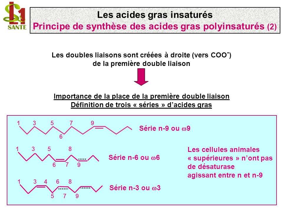 Importance de la place de la première double liaison Définition de trois « séries » dacides gras Les doubles liaisons sont créées à droite (vers COO -