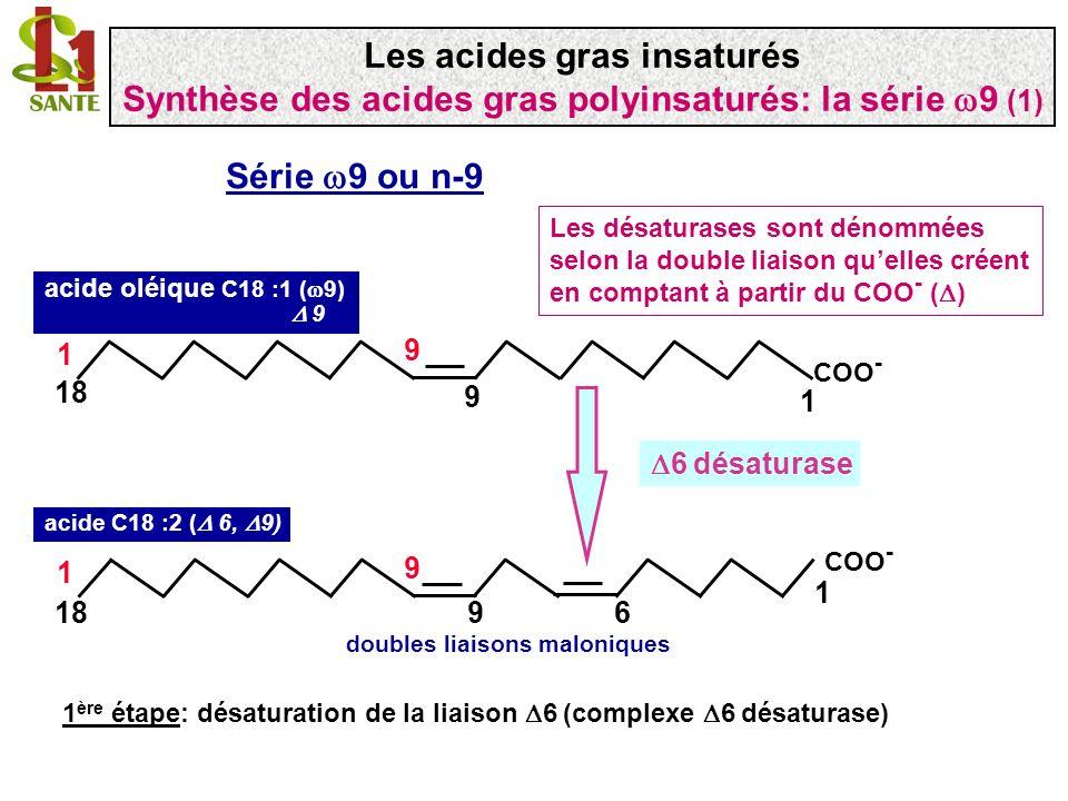 COO - 1 9 18 1 9 acide oléique C18 :1 ( 9) 9 COO - 1 918 1 9 6 acide C18 :2 ( 6, 9) doubles liaisons maloniques 1 ère étape: désaturation de la liaiso